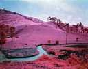 Richard Mosse - Eastern Congo 2011