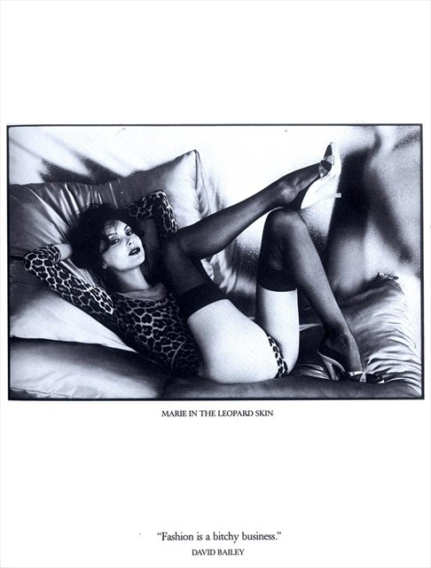 David Bailey book