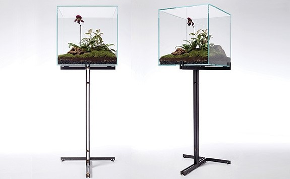 Self Sustaining Custom Terrarium by Lindsay Taylor