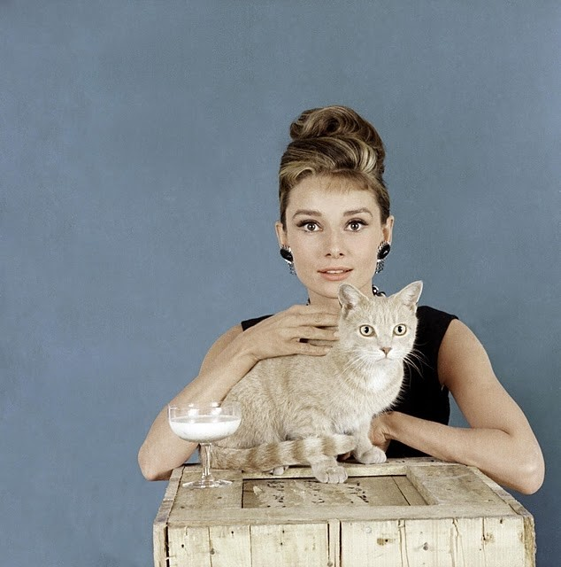 Audrey and CAT