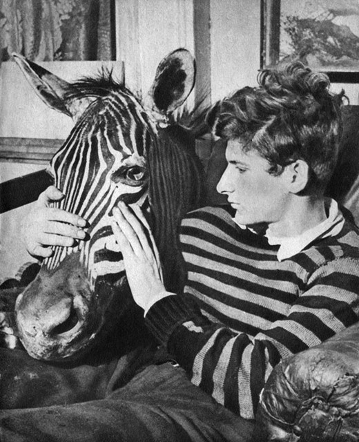 Lucian Freud With Zebra Head