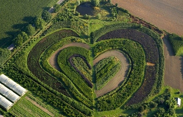 Heart-shaped garden