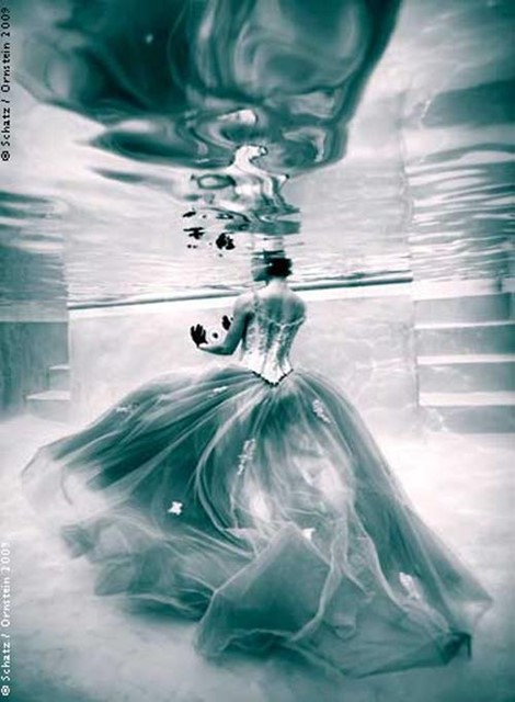 Underwater Photography by Howard Schatz
