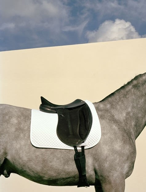 Hermès saddle
