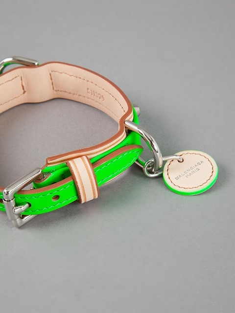 Neon Balenciaga Dog Collar