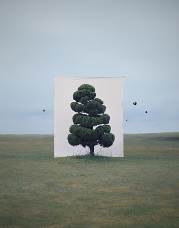 Photographs by Myoung Ho Lee