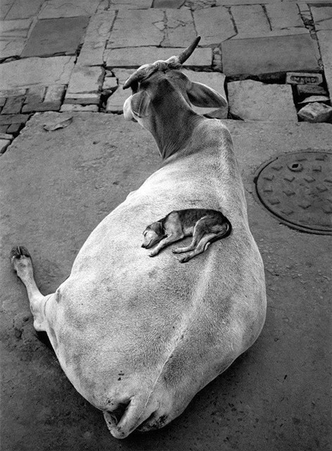 Varanasi, India, 1999, by Pentti Sammallahti
