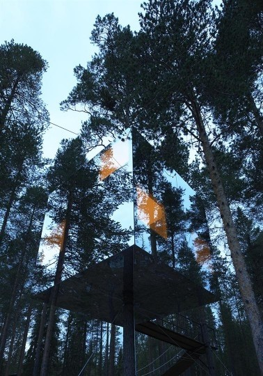Tree Hotel, Arctic Circle