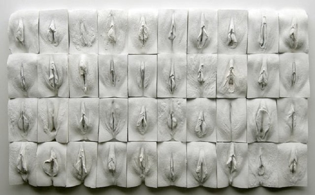 THE GREAT WALL OF VAGINA BY JAMIE MCCARTNEY