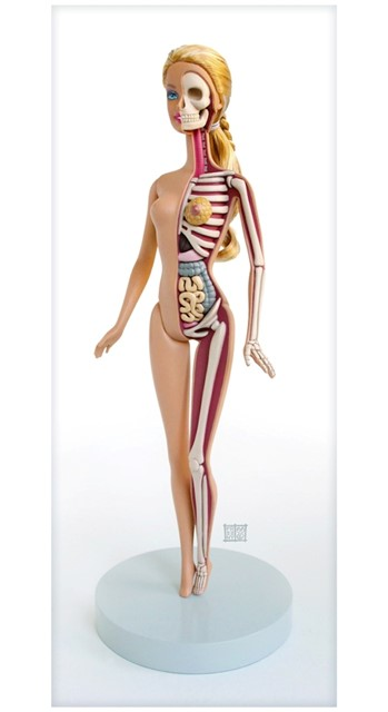 DISSECTED BARBIE BY JASON FREENY
