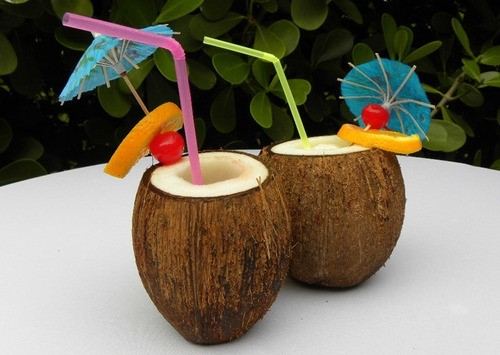 Cocktails in Coconuts