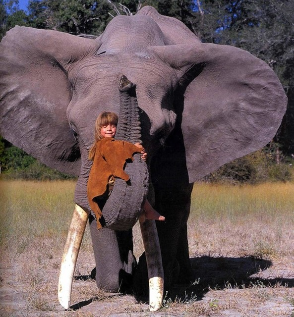 Tippi and Elephant