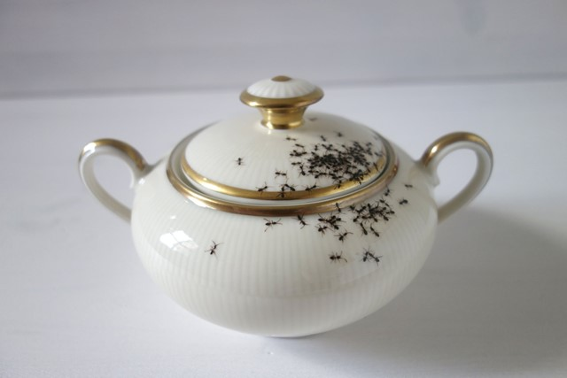Vintage Porcelain Dishes Covered in Hordes of Hand Painted Ants