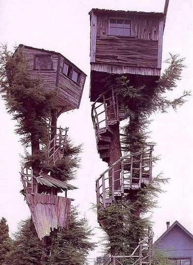 Treehouse Neighbours