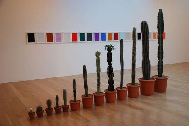 Cacti by Martin Creed