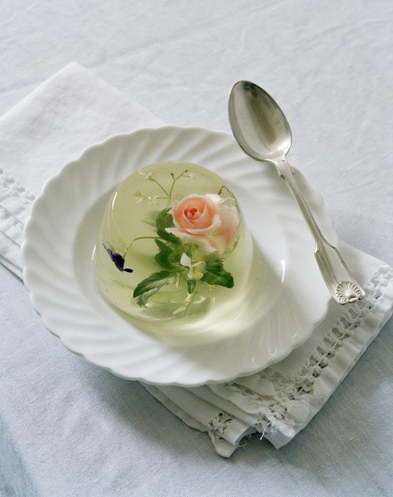 Panna Cotta by Tim Walker