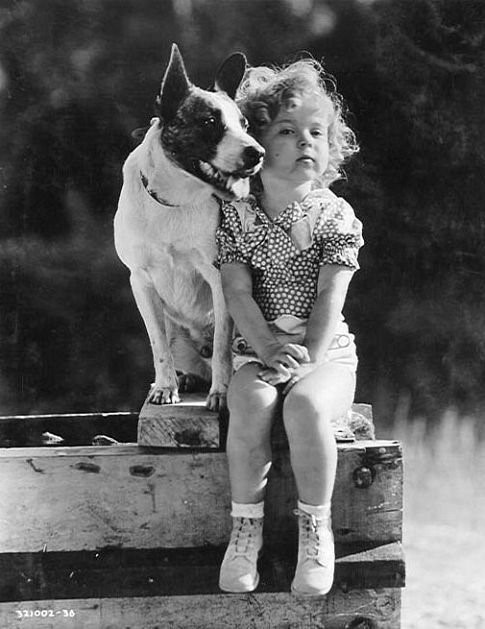 Shirley Temple and Terry the dog
