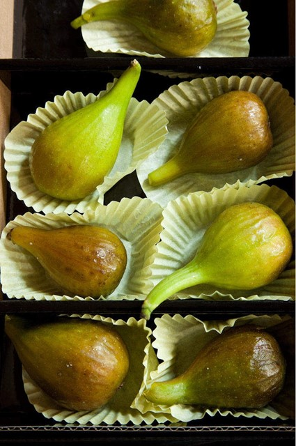Figs, photographed by Deborah Whitlaw Llewellyn
