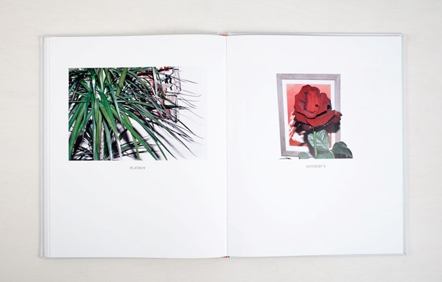Plants by Polly Brown
