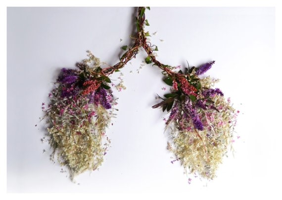 Flower Lungs by Camila Carlow