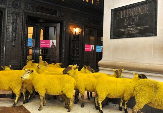 Sheep in London launch the Campaign for Wool