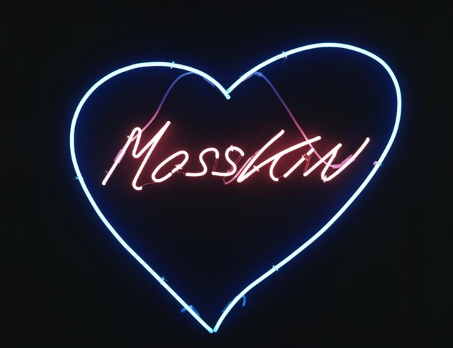 Mosskin by Tracey Emin