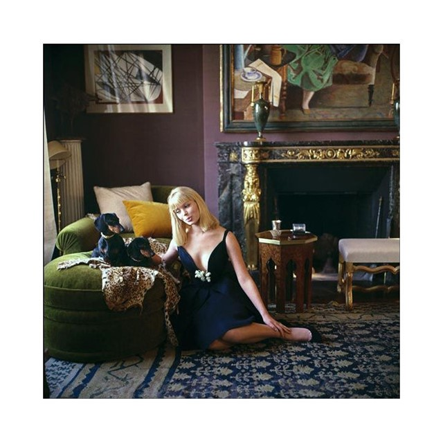 Nico with dachshunds, Paris, 1960