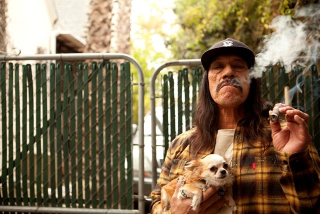 Danny Trejo for Sneeze No.9 by Kenneth Cappello, 2010